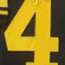 Polamalu, Troy Framed Jersey2_Number