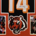 Dalton, Andy Framed Bengals Jersey_Photos