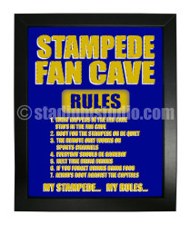 Harrisburg Stampede Fan Cave_Framed