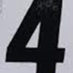 Polamalu, Troy Framed Jersey_Number
