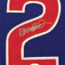 Sandberg, Ryan Framed Cubs Jersey_Number