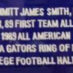 Smith, Emmitt Framed Gators Jersey_Stats